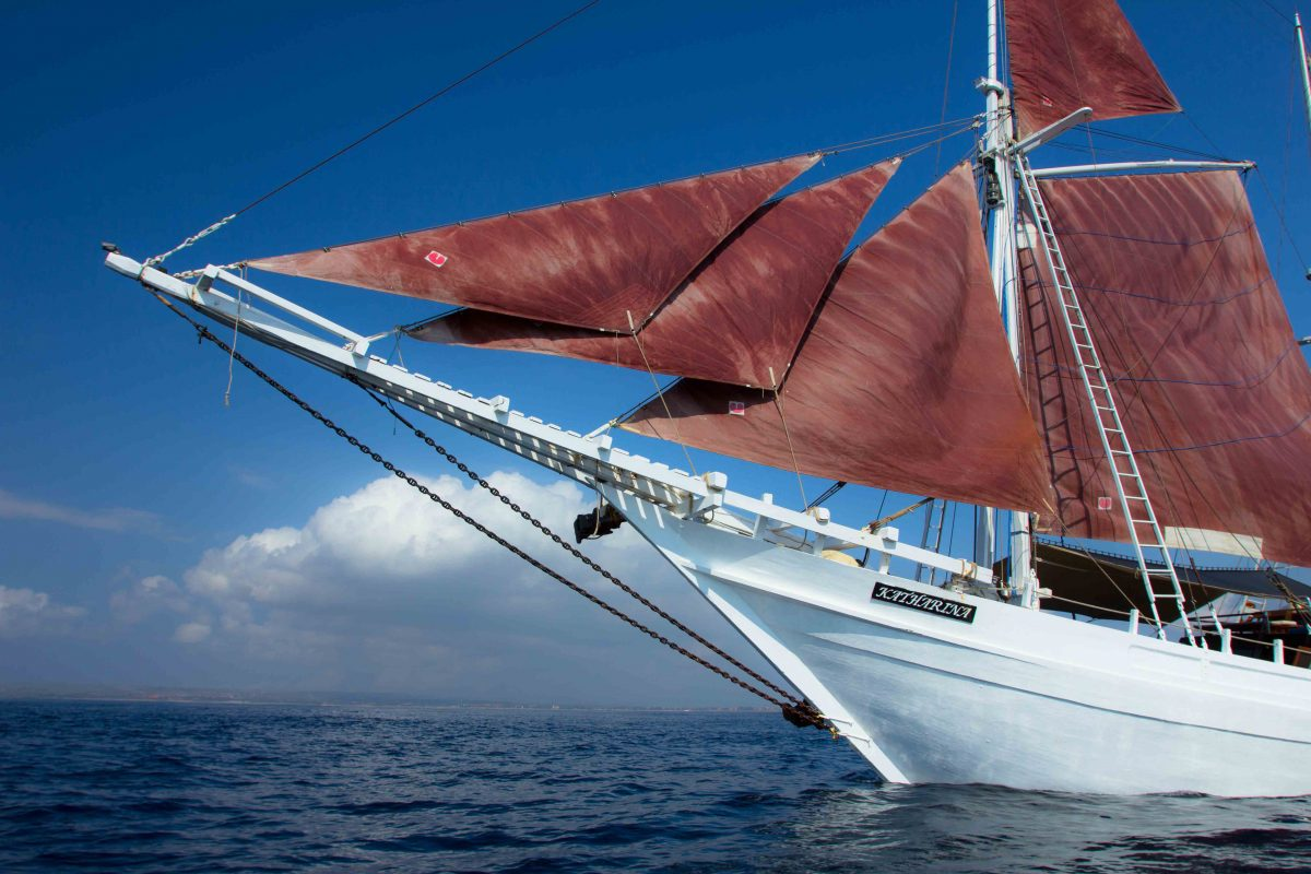 10 best small ship cruises include SeaTrek Bali