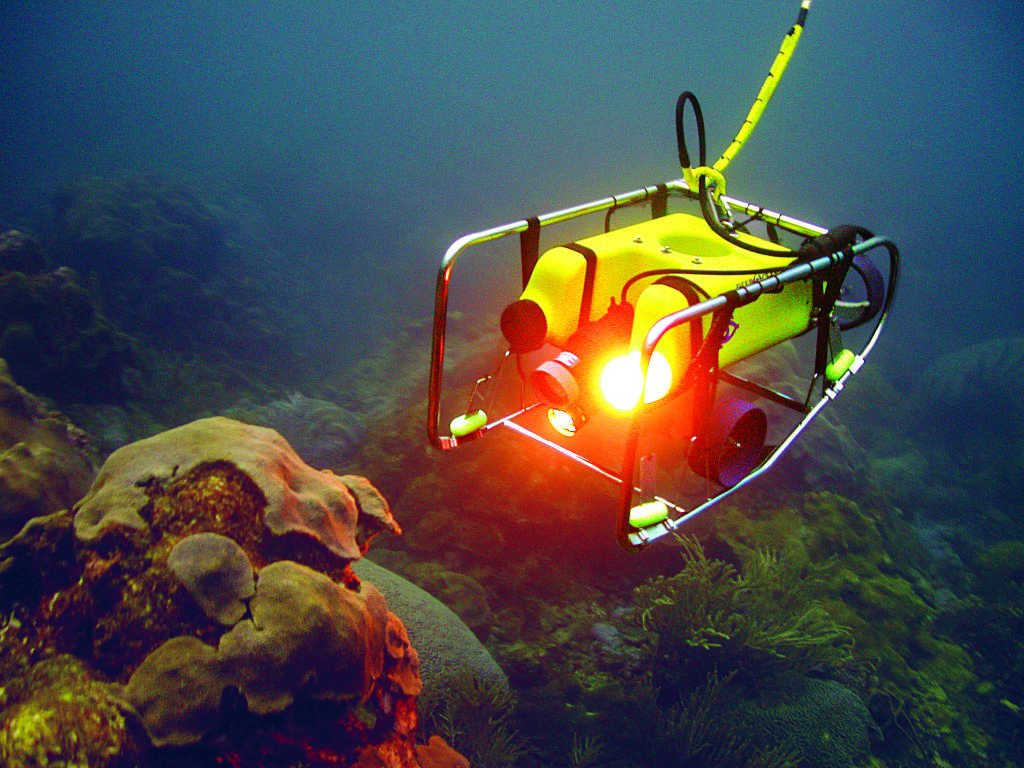 Endeavour's R.O.V. takes undersea images on Galapagos cruises. * Photo: Lindblad Expeditions