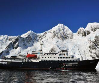 Planicus Antarctica Robert van Poppelen-Oceanwide