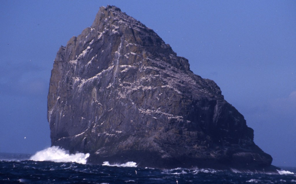 St. Kilda is a famous birding island in the far Western Isles.