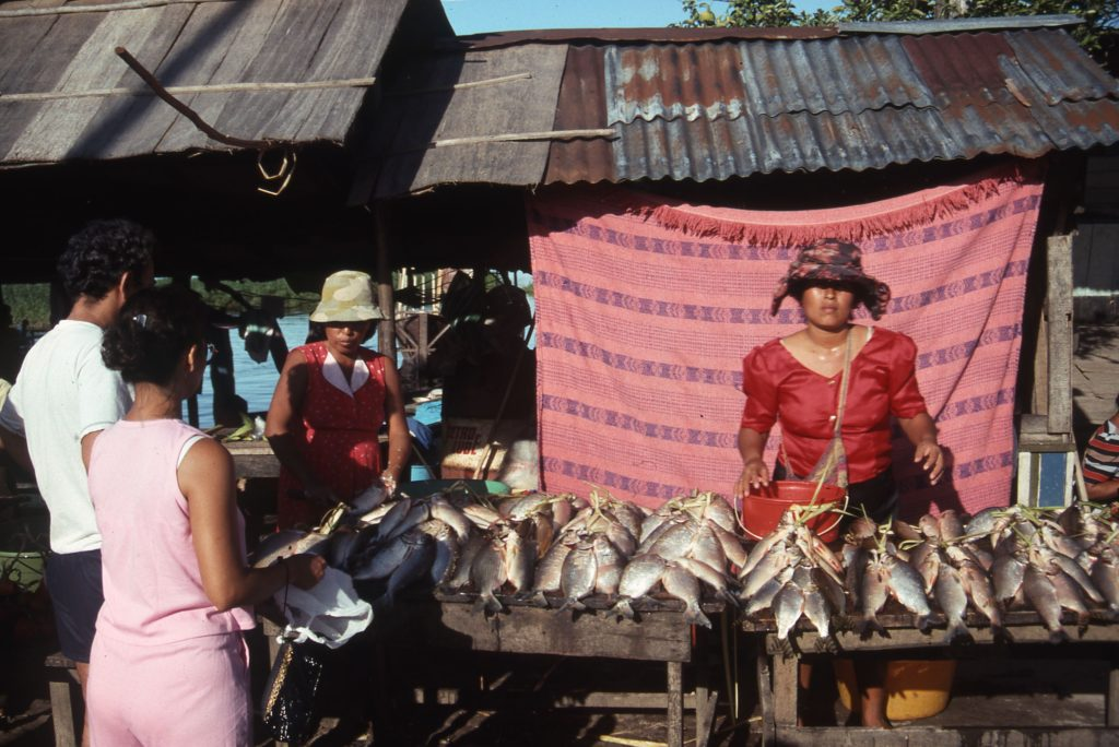 Fish market along the Upper Amazon, Iquitos, Peru