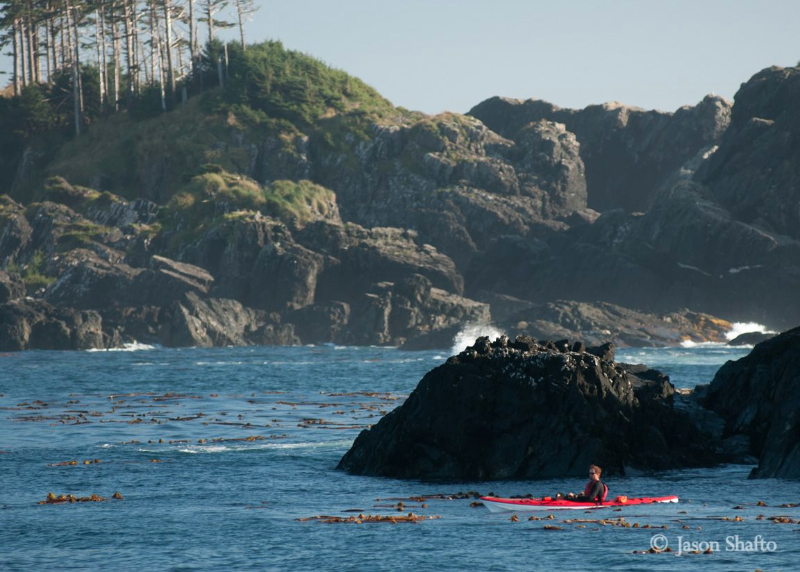 Kayaking off Haida Gwaii. *Photo: Jason Shafto