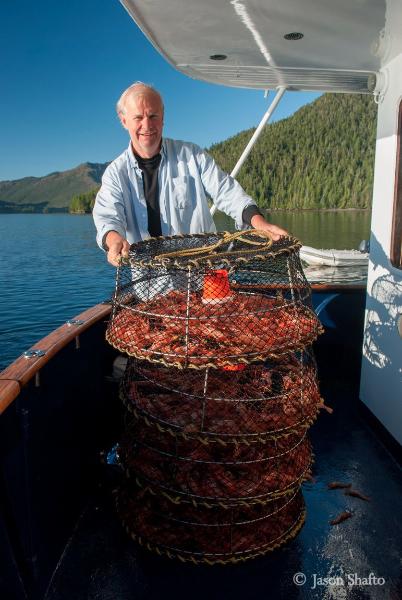 A haul of fresh prawns. *Photo: