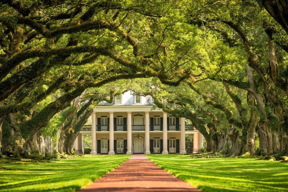 Oak Alley Plantation, Lower Mississippi. * Photo: French America Line
