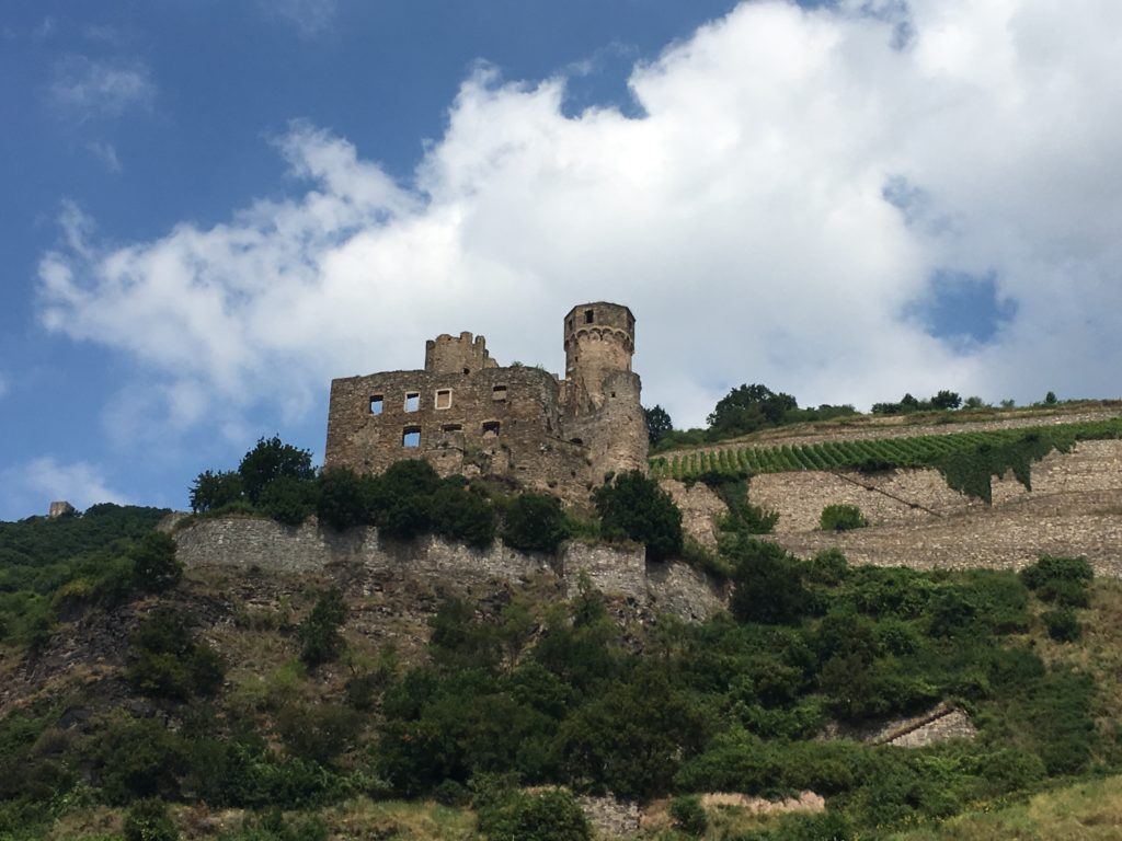 The castles of the Rhine. * Photo: Heidi Sarna