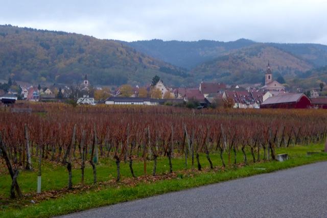 Pastoral Alsace.
