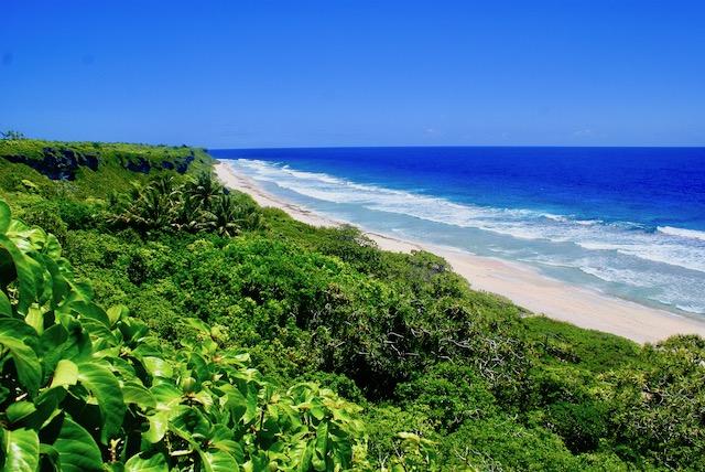 Pitcairn Island group's Henderson Island