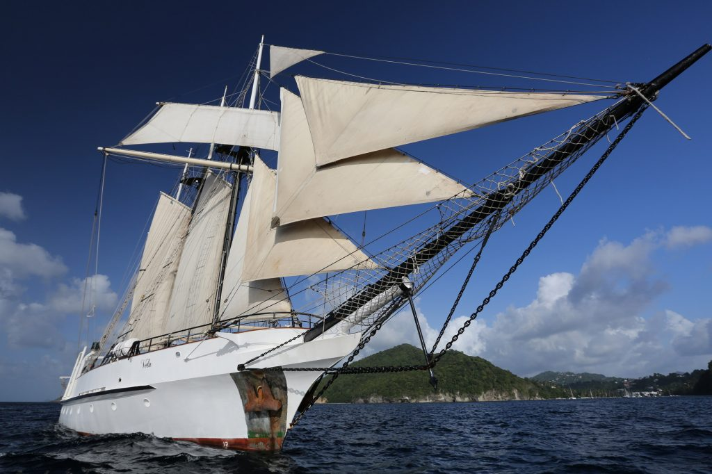 Quirky Island Windjammers Theme Cruises