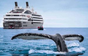 quirky-cruise-cruise-traveller-deals-april-14-2018-photo-of-whale-with-le-soleal-ship-in-the-background