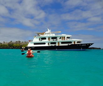 quirky-cruise-adventuresmith-explorations-petrel-in-the-galapagos