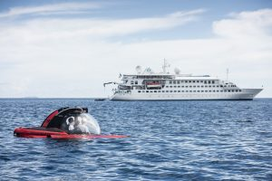 Q&A with Crystal Yacht Expedition Cruises' Mark Spillane
