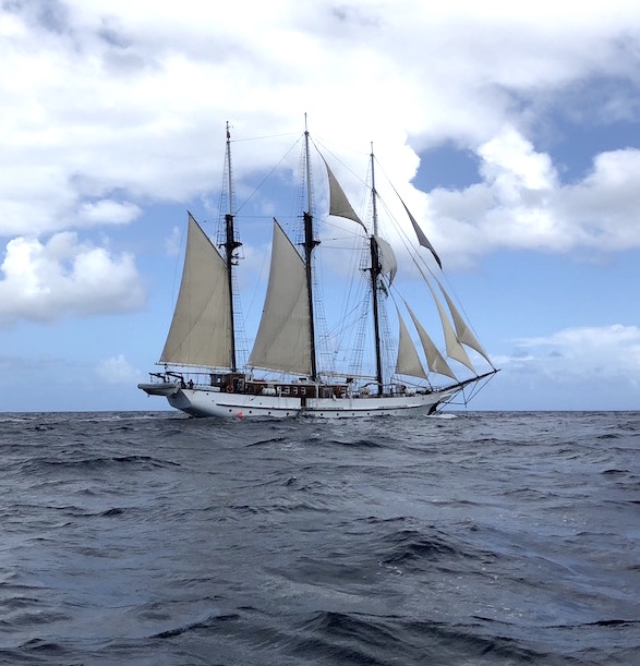 Island Windjammers' Caribbean Sailing Adventure