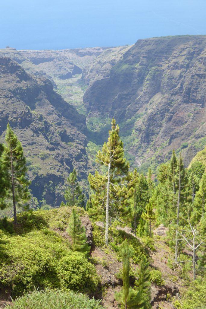 Tapueahu Canyon