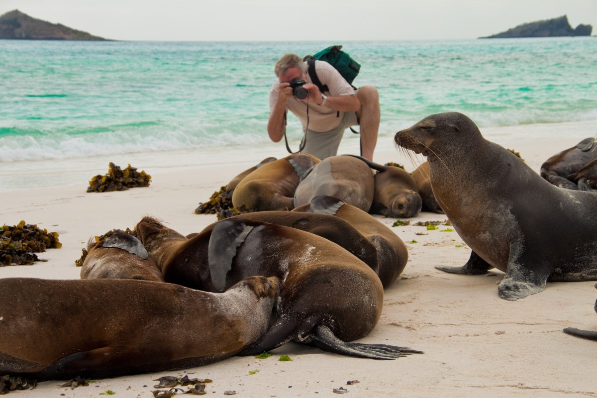 Six Day Galapagos Islands Cruise