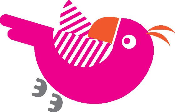 quirkycruise bird