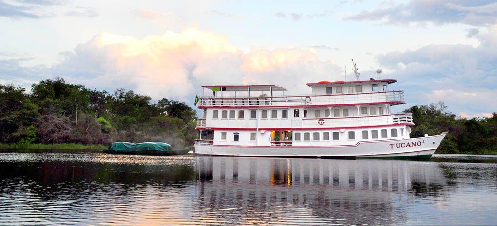 Amazon Nature Tours's Tucano