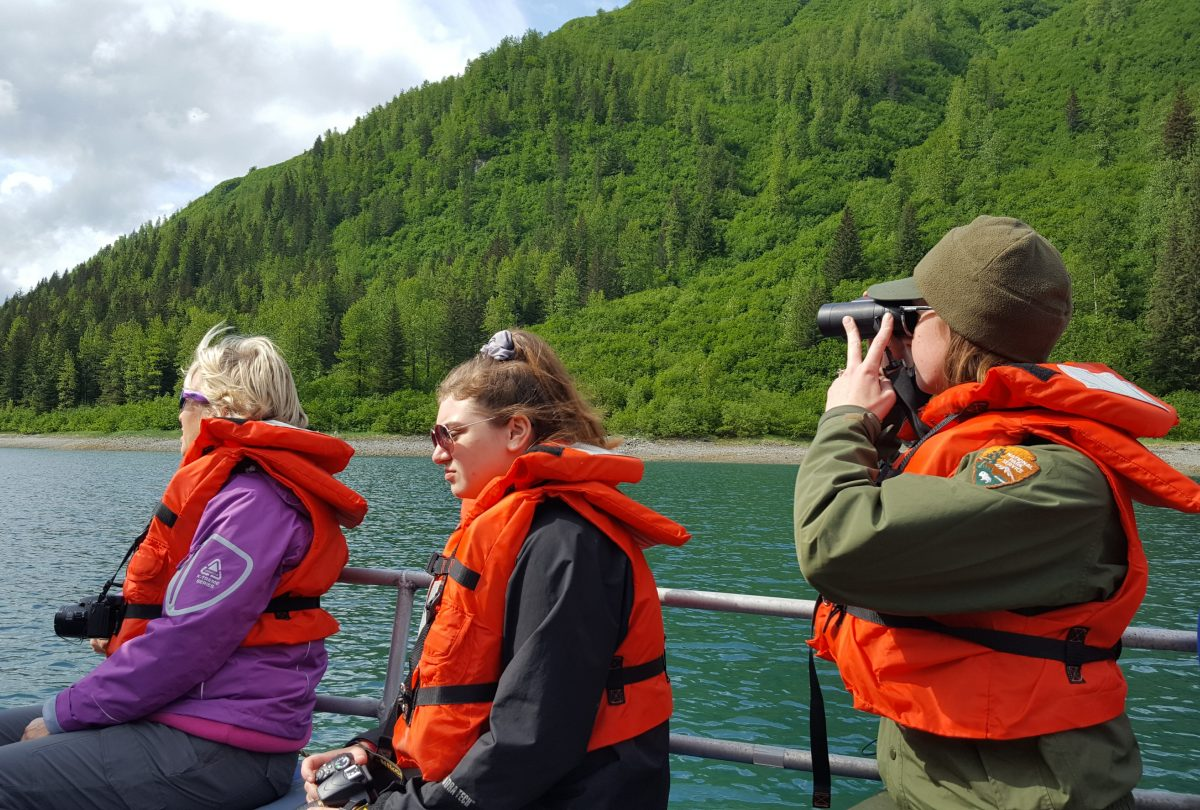 wildlife viewing in Glacier Bay National Park