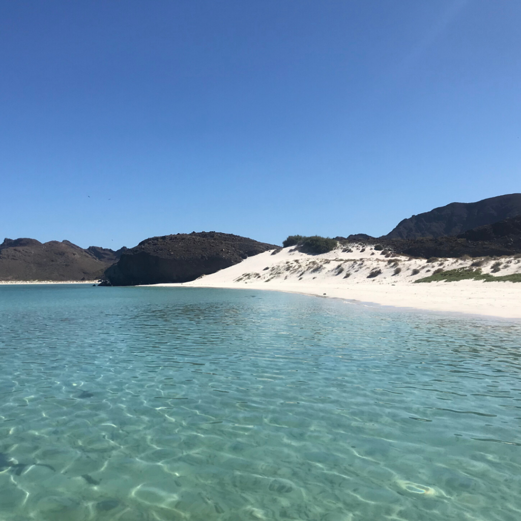 Beautiful Beach on a Sea of Cortez cruise