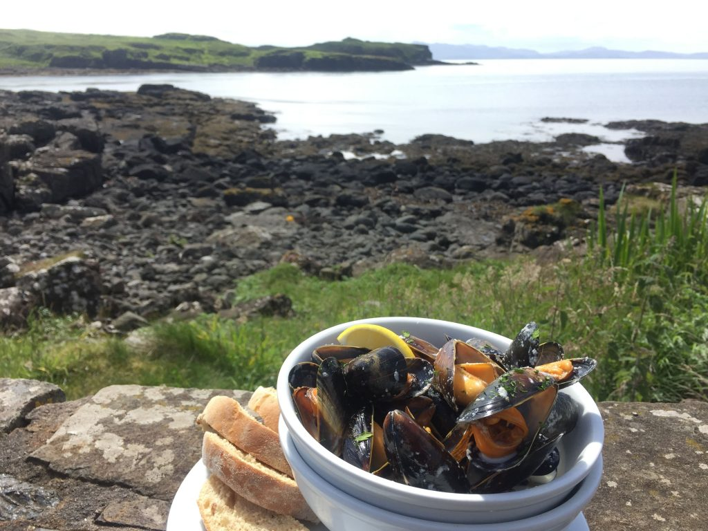 Fresh mussels on a Hebrides cruise