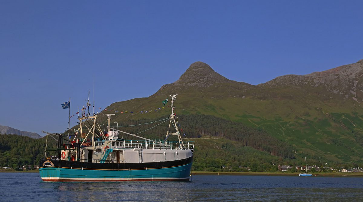 Skarv Lines cruising Scotland