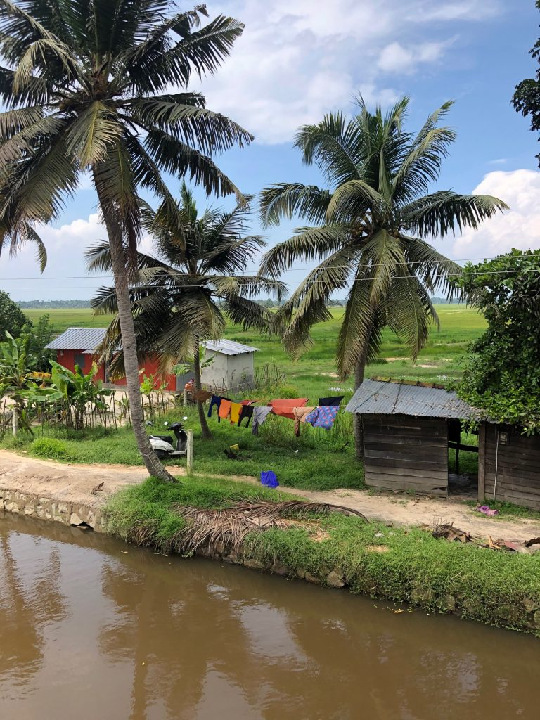 Vaikundam cruising past a village on a Kerala houseboat cruise